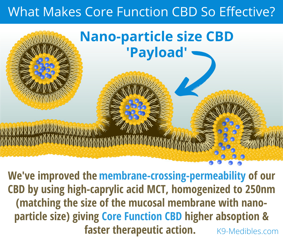 Core Function CBD